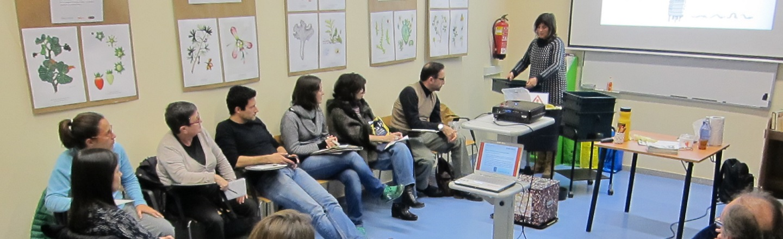 Activitats trimestrals: tallers, visites i tertúlies