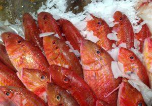 peix 2p