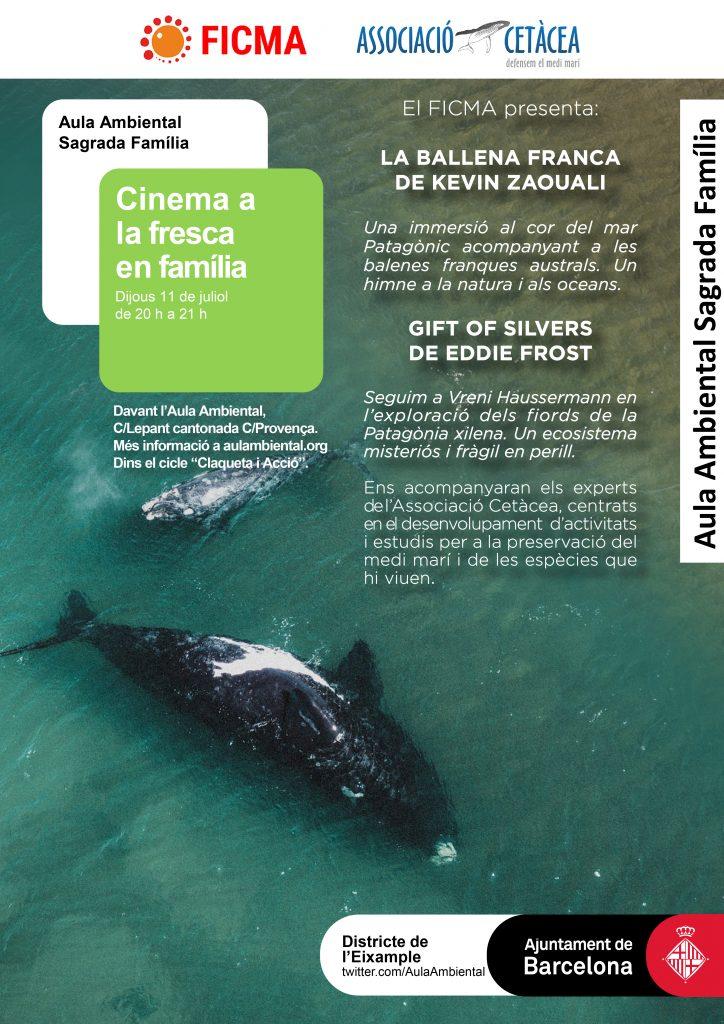 AA_Cinema